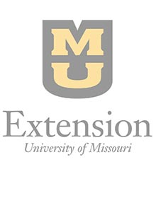 Achieve positive change in your leadership direction with new online program from MU Extension