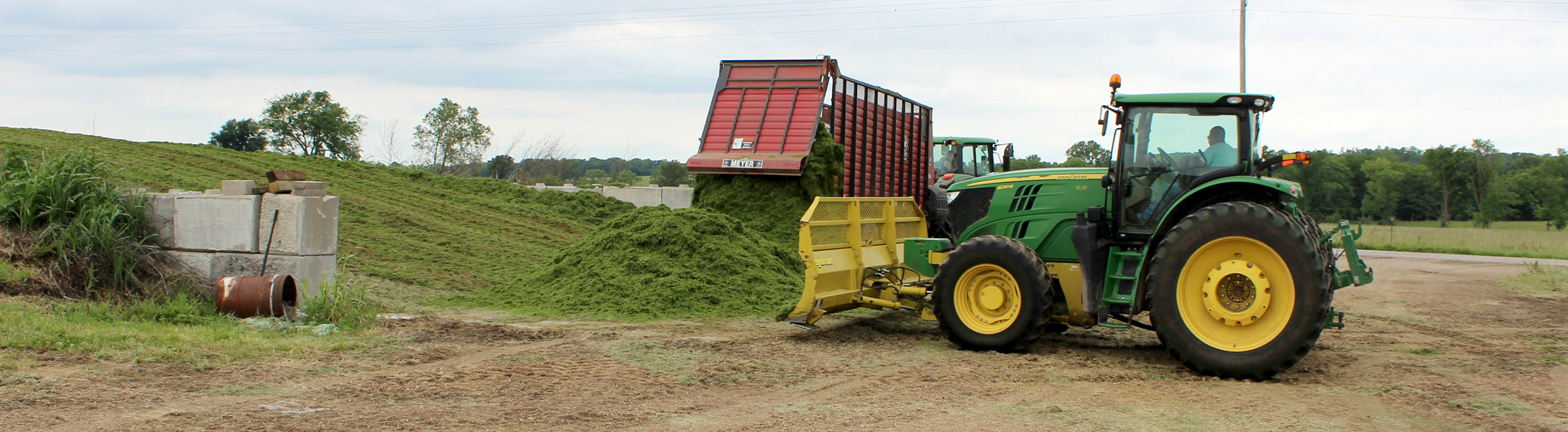 MU Extension livestock specialist Gene Schmitz recommends that beef producers use chopped silage rather than balage for beef cattle. As the drought of 2018 continues, farmers are turning to drought-stressed corn as alternative feed sources. Photo courtesy