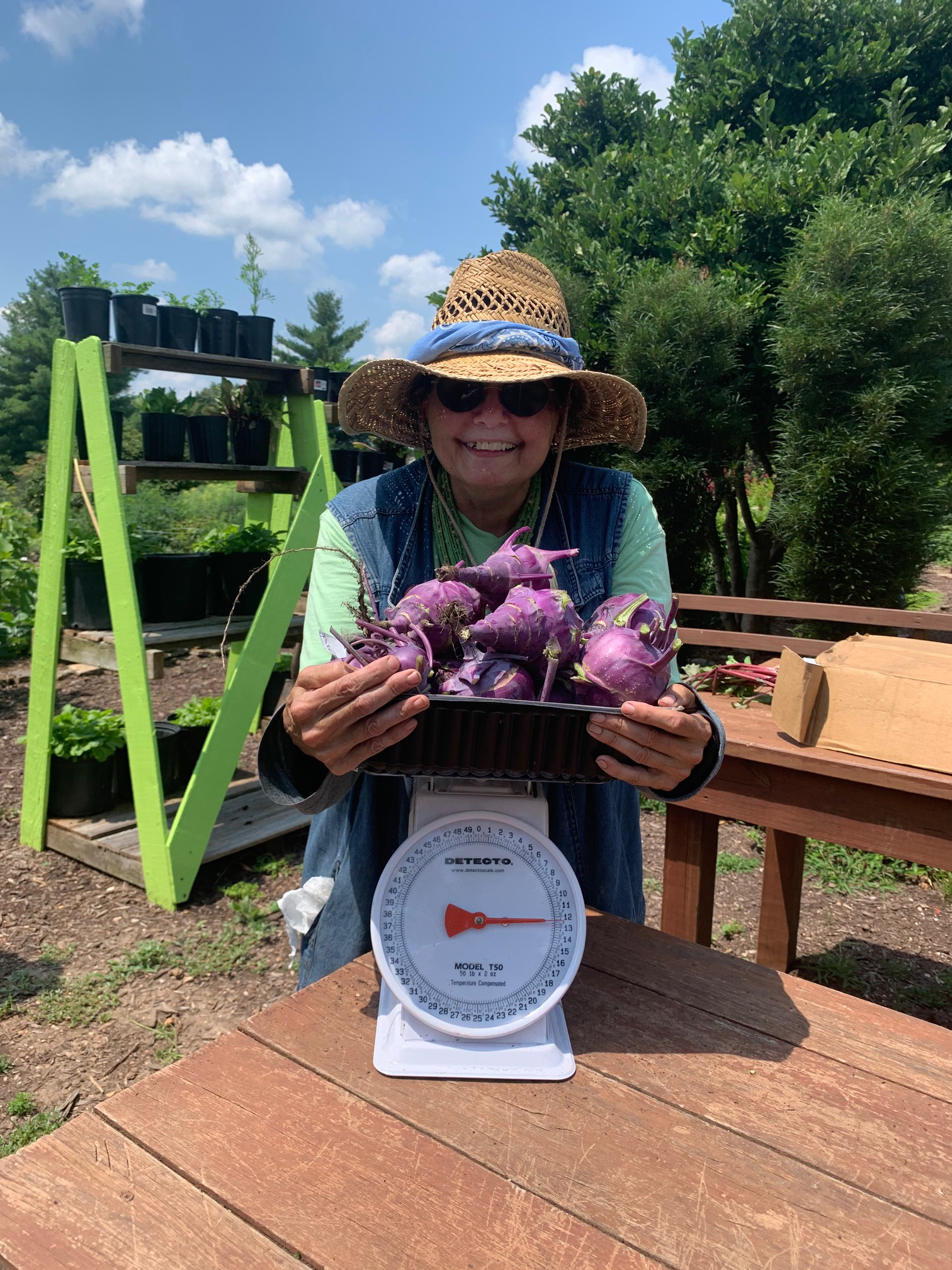 Maryfrances DiGirolamo with 12 pounds of kohlrabi harvested this past July. Photo provided by Kelly McGowan.