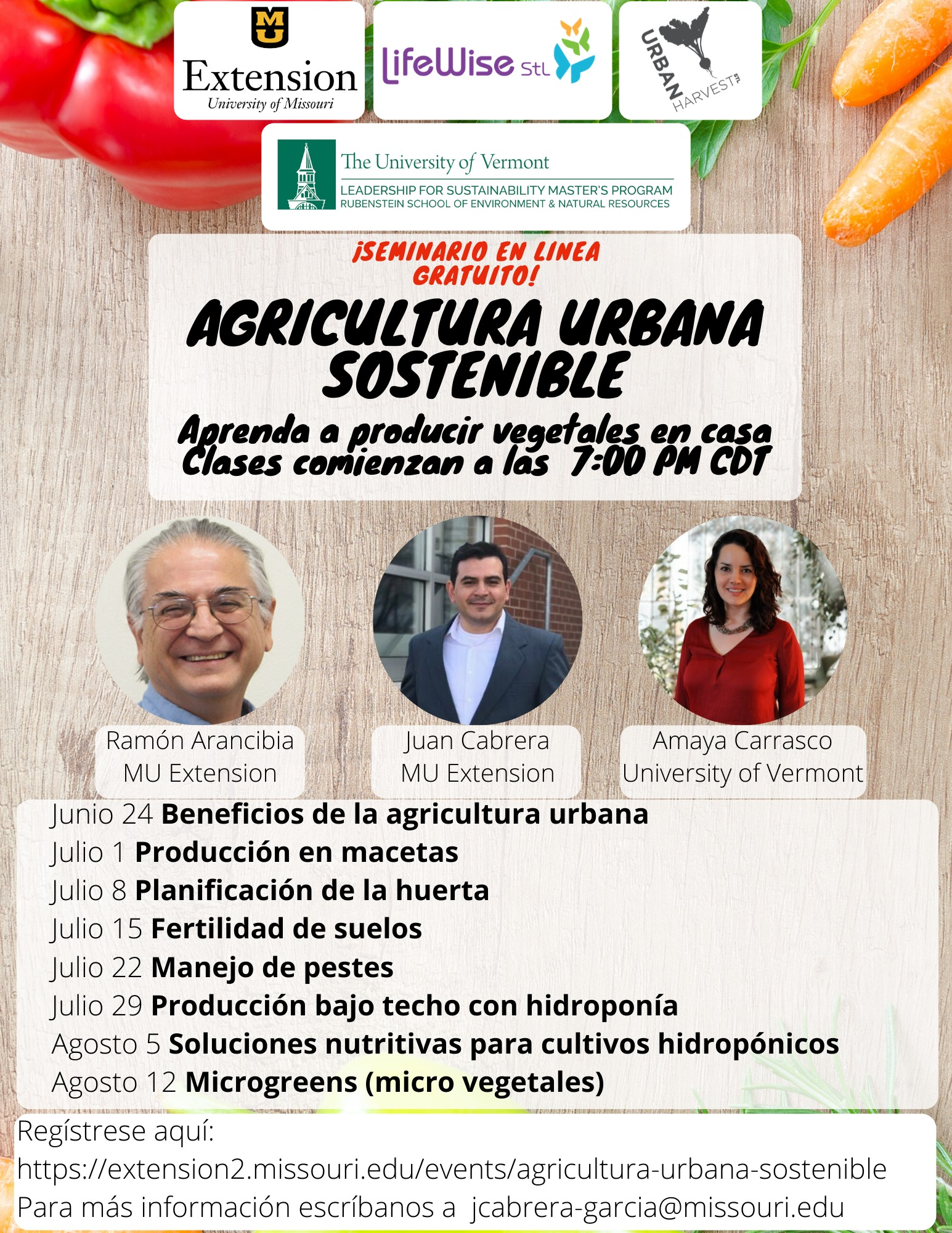 Flyer for Spanish-language webinar.