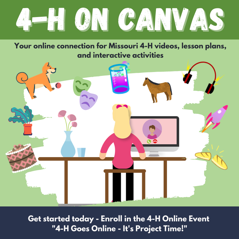 4-H on Canvas