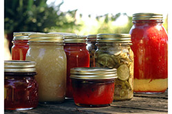 Homemade preserves sitting on a rustic table outside. Pickles, tomatoes, applesauce, etc.