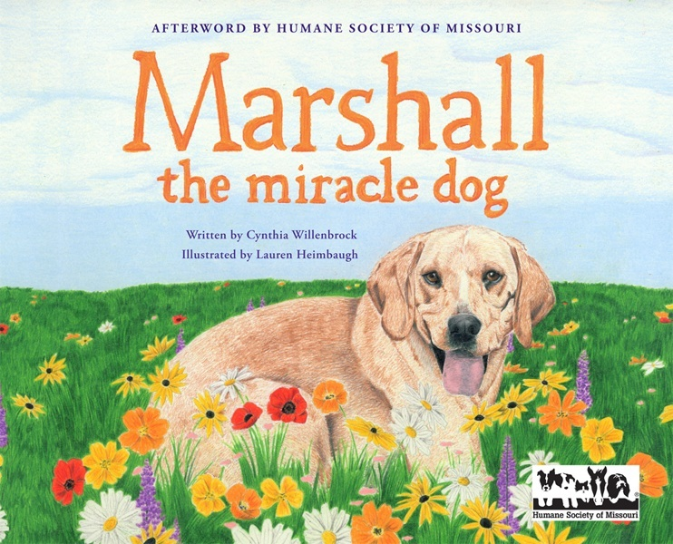 Marshall the Miracle Dog book cover