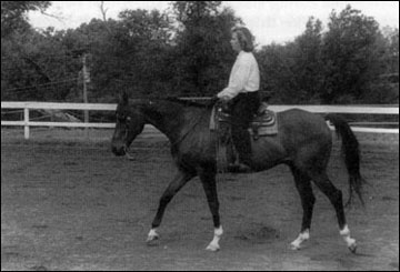 Ride with your reins at a comfortable length