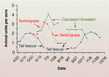 Carrying capacity of tall fescue, switchgrass and caucasian bluestream measured as animal units per acre