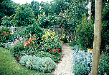 Plants grouped into beds