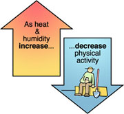 Temperatures and humidity