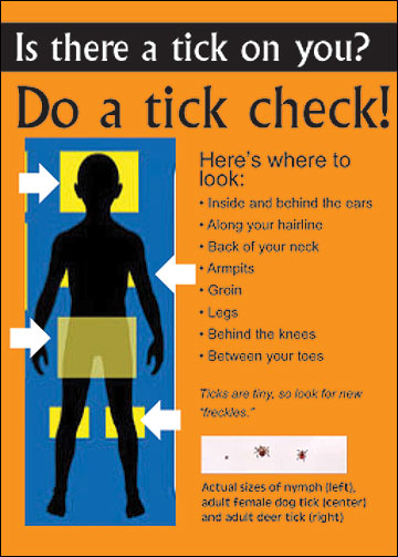 To prevent possible infection with a tick-borne illness, check for ticks within 24 hours