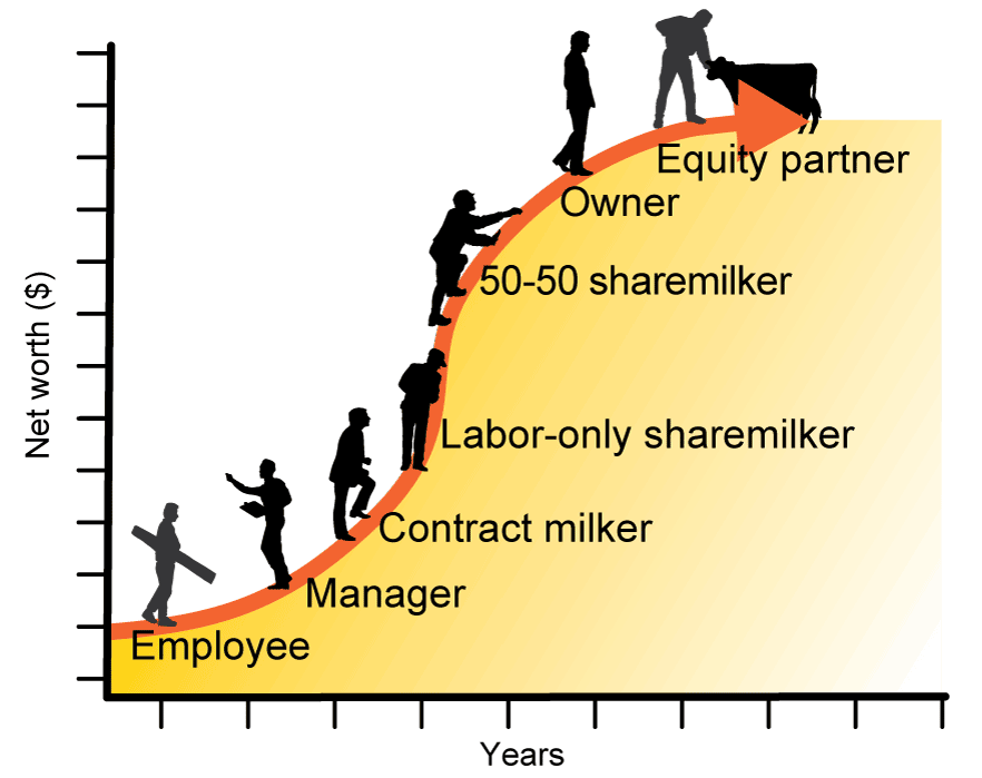 Steps along the dairy career path include employee, manager, contract milker, labor-only sharemilker, 50-50 sharemilking, owner and equity partner.  As individuals move along the path, they often increase their net worth over time.