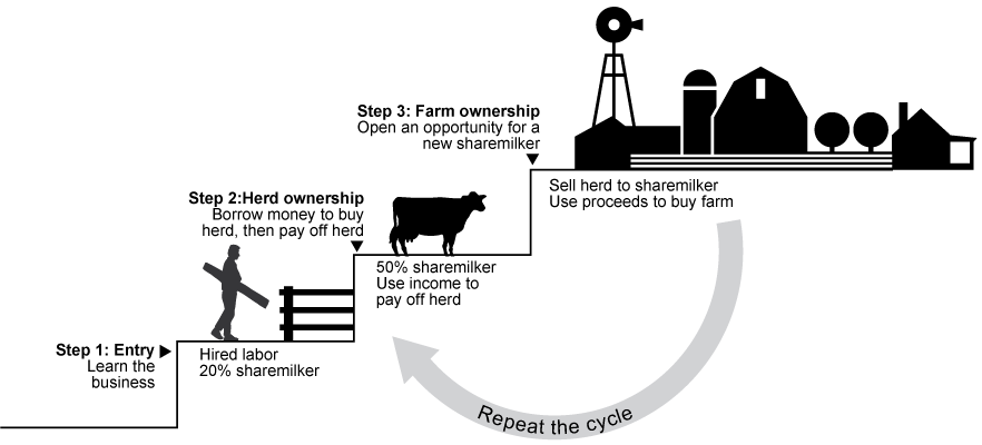Sharemilking to ownership involves three steps. Step 1 is an labor-only sharemilker as an entry point to learn the business. Step 2 is a 50 percent sharemilker and begins when an individual can borrow money to buy a herd and pay off over time. Step 3 is farm ownership, which can be gained by selling the herd to another sharemilker and using the proceeds to buy a farm.
