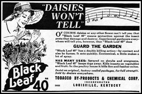 An old newspaper advertisement for Black Leaf 40