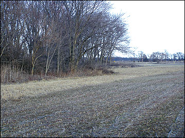 Locations for establishing a herbaceous field border are identified next to woodland