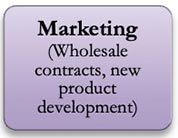 Marketing (wholesale contracts, new product development)
